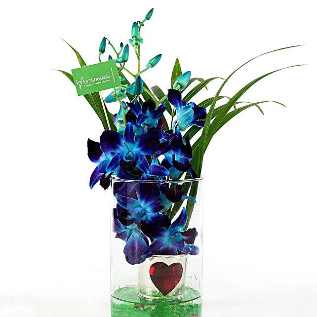 Hearty Orchid Vase Arrangement: Orchids