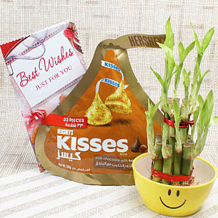 2 Layer Lucky Bamboo & Hershey's Kisses: Plant Combos