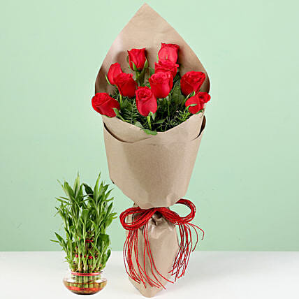 10 Red Roses Bouquet With Lucky Bamboo: Plant Combos