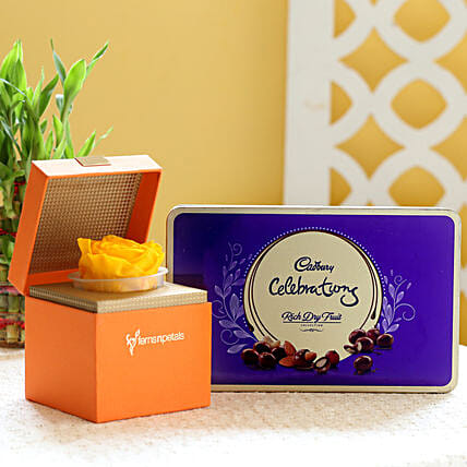 Yellow Forever Rose & Cadbury Dry Fruit Collection: Flowers with Chocolates