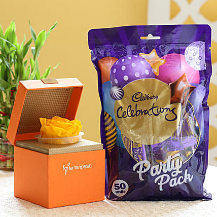 Yellow Forever Rose & Cadbury Party Pack: Buy Flowers Combo