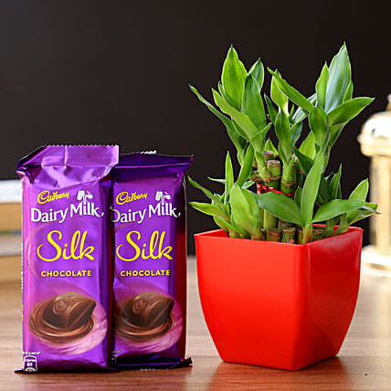 2 Layer Bamboo In Melamine Pot & Cadbury Chocolates: Cadbury Chocolates