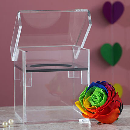 Acrylic Box With Multicolour Forever Rose: