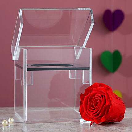 Magnificent Red Forever Rose In Acrylic Box: