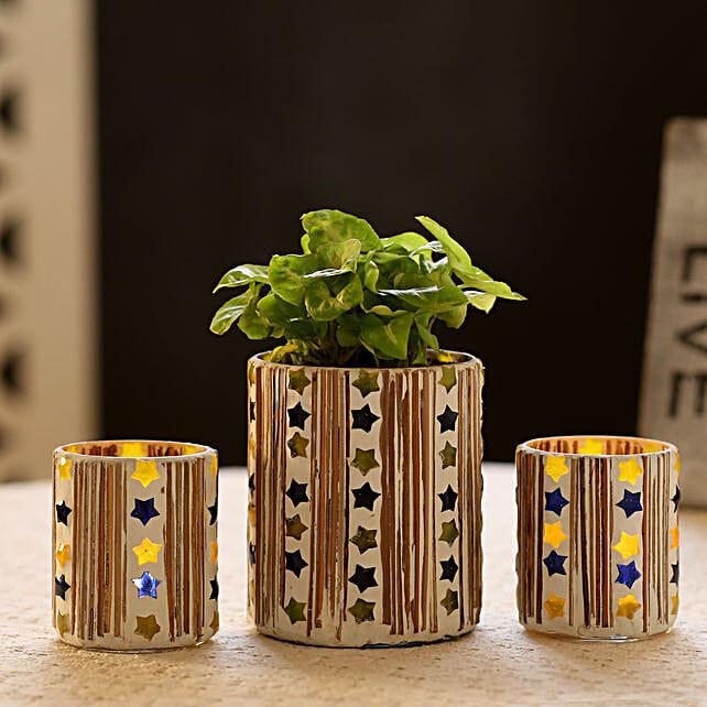 Syngonium Plant In Mosaic Art Pot & 2 Votive Holders: Gift Ideas