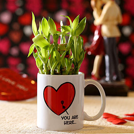 Lucky Bamboo You Are My Valentine's Mug: Ornamental Plants