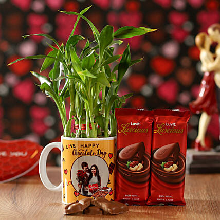 2 Layer Bamboo Plant With Fruit & Nut Chocolates: Lucky Bamboo Plants