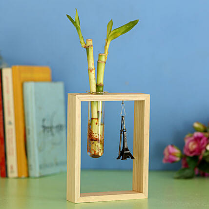 2 Bamboo Sticks In Wooden Frame: Bamboo Plants
