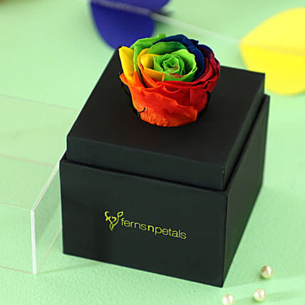 Rainbow Forever Rose In Black Box: Valentines Day Flowers