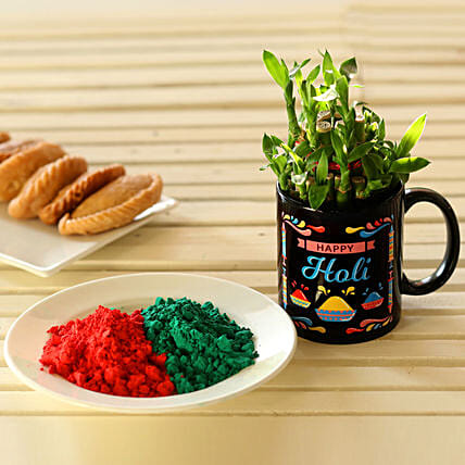 Bamboo Plant & Gulal For Holi: Holi Gifts