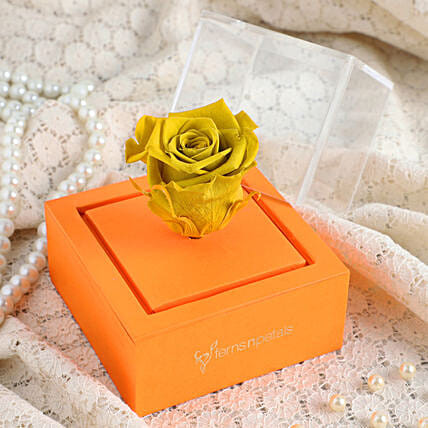 Olive Forever Rose In Orange Box: Forever Roses