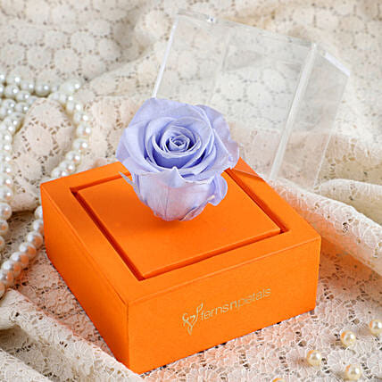 Lavender Blue Forever Rose In Orange Box: