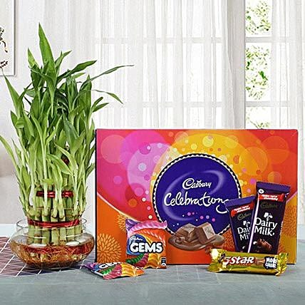 Yummy Chocolates N Three Layer Bamboo Plant: New Year Gift Hampers