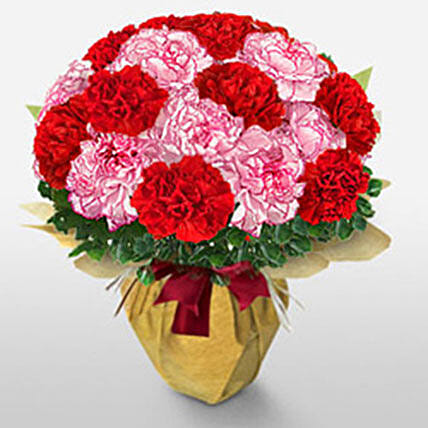 Brilliant Love: Carnations Flowers Delivery Philippines