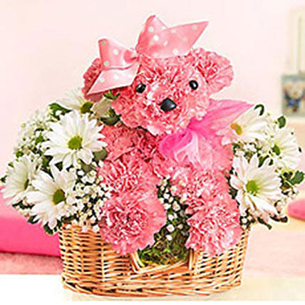 Princess Paws: Carnations Flowers Delivery Philippines