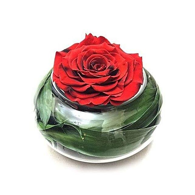 Preserved Red Rose In Round Vase: Birthday Flower Delivery In Saudi Arabia