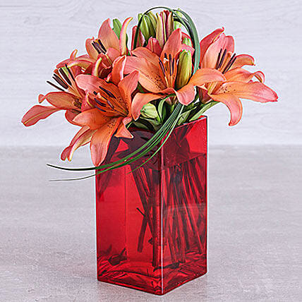 Sunset Lilies And Leriopi In A Red Square Vase: Lilies to South Africa