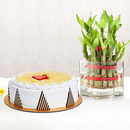 Pineapple Cake and Lucky Bamboo Combo: Send Mothers Day Gifts to UAE