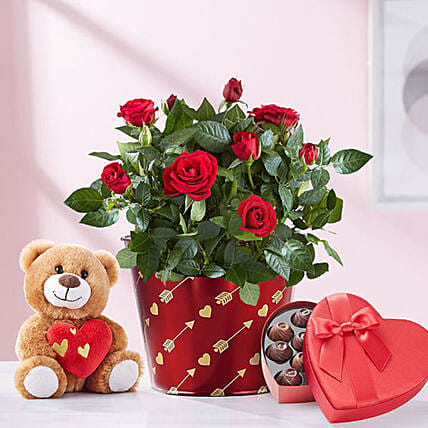 Heartfelt Love Rose Plant With Teddy: Valentine Flowers to USA