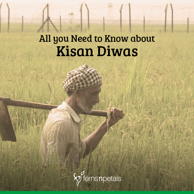 All you need to Know about Kisan Diwas
