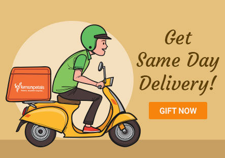 Same Day Delivery Gifts in Canada