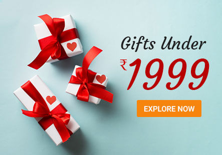 Order Gifts Under 1999 in Canada
