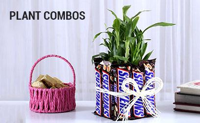 plant-combos