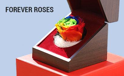 Forever-Roses