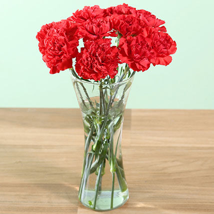 Perfect Red Carnations