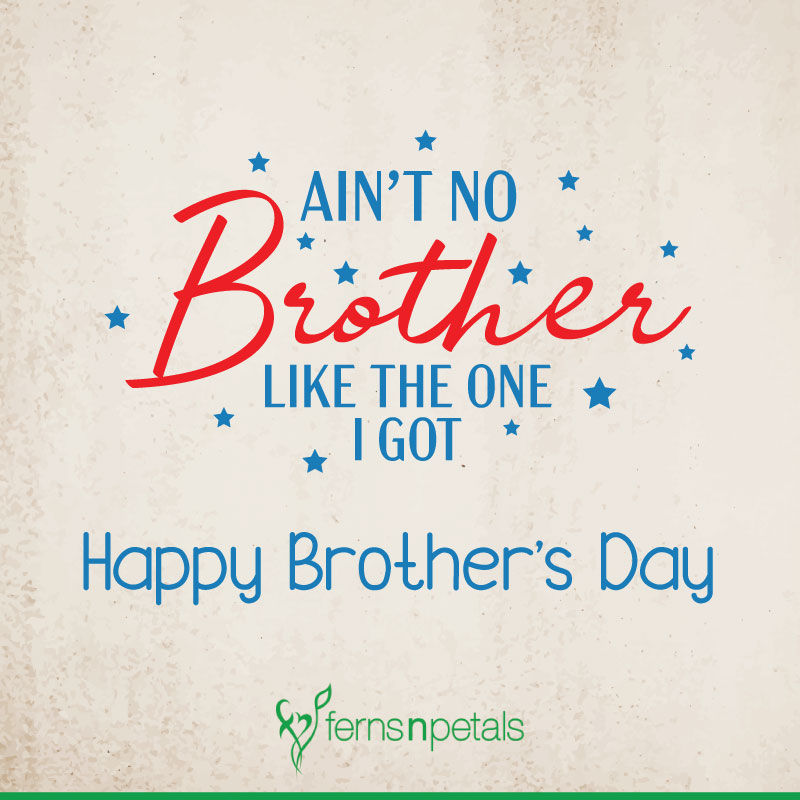 20 Happy Brother S Day Quotes Wishes N Messages Ferns N Petals