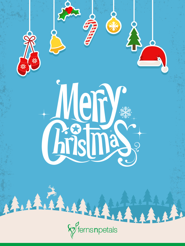 30 merry christmas wishes quotes greetings online 2020 ferns n petals 30 merry christmas wishes quotes