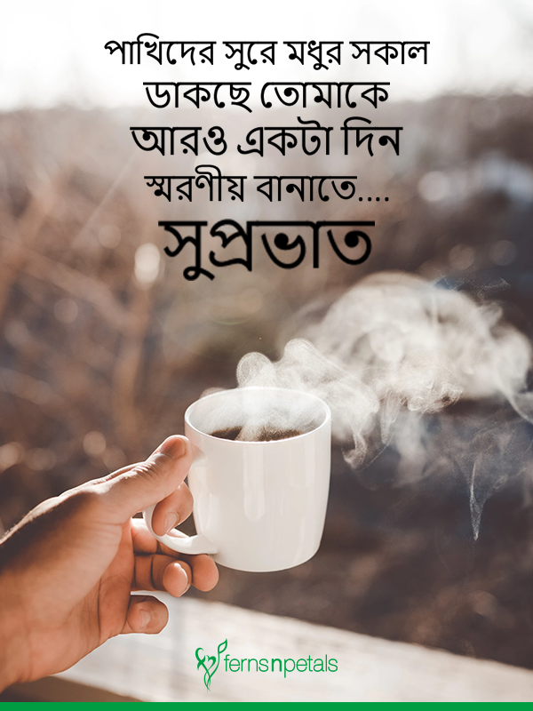 30 Good Morning Quotes Wishes Messages 2019