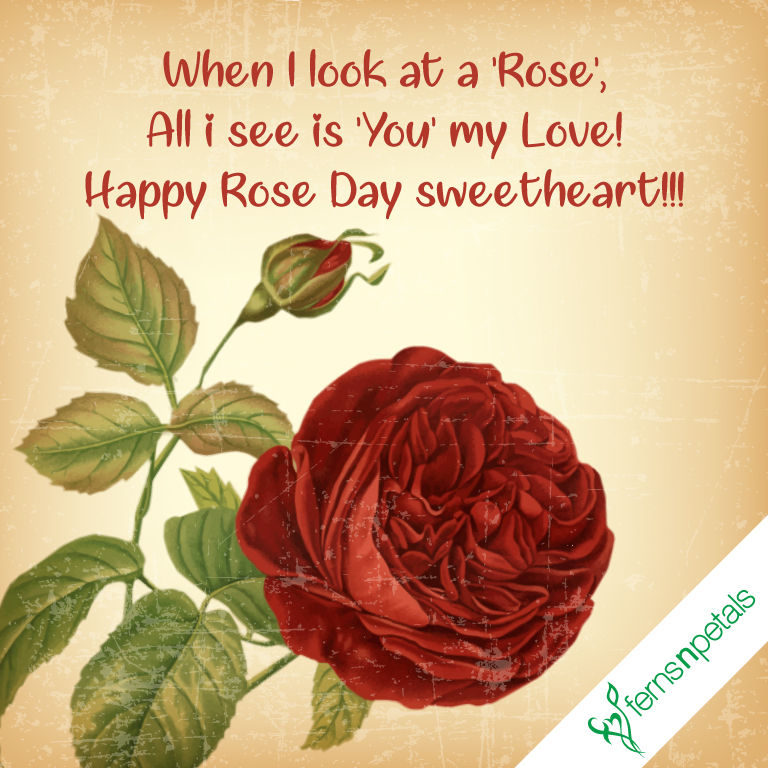 onlne rose day wishes