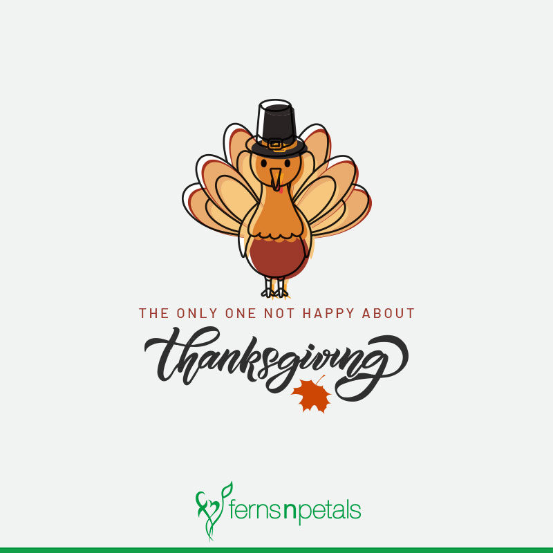 thanksgiving day wishes online