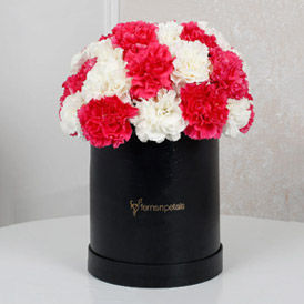 Carnation Delivery to USA