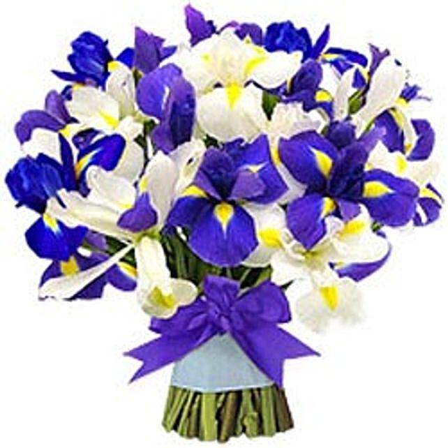 Ocean View - BHRN:Send Congratulations Flowers to Bahrain