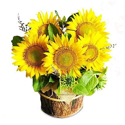 Sparkling Sunflower Arrangement