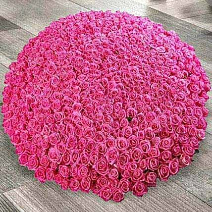 1000 Dark Pink Roses Arrangement