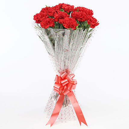 12 Glorious Red Carnations Bouquet