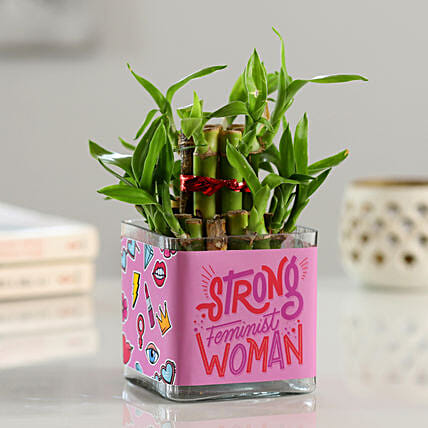2 Layer Bamboo In Strong Woman Printed Vase:Lucky Bamboo Plants
