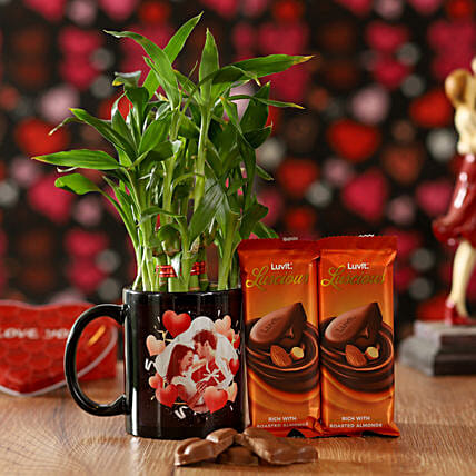 Online 2 Layer Bamboo and Bamboo Plant For Valentine Day
