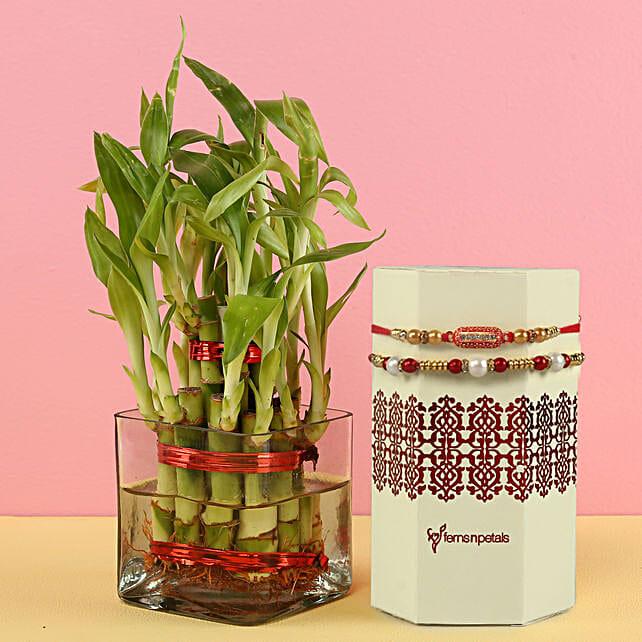Online 2 Layer Plant And Designer Rakhi