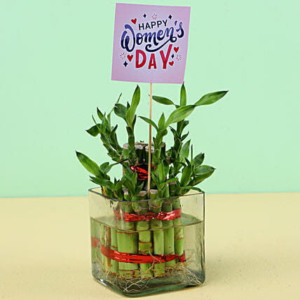 Desktop Plant with Women's Day Tag:Womens Day Gifts for Daughter