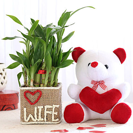Teddy and Pot Plant For Wife Online:Plants N Teddy Bears