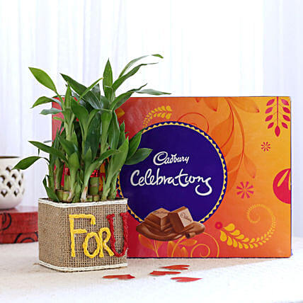 Printed Plant Pot N Chocolate for Valentine
