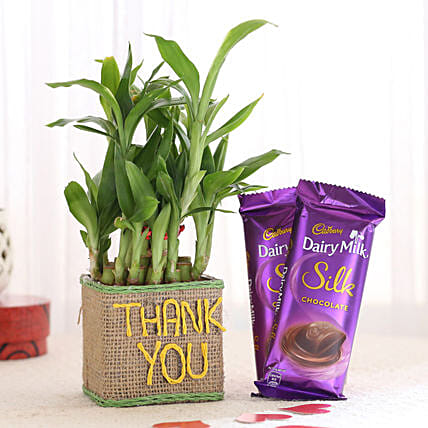 Thank You Plant with Silk Online
