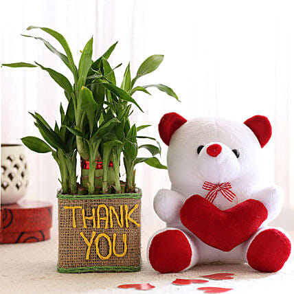 Thank You Plant with Teddy Online:Plants N Teddy Bears