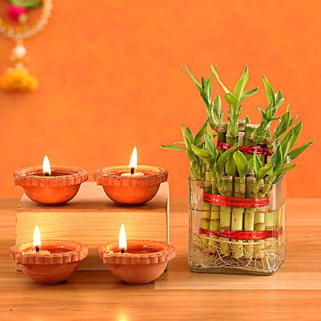 2 Layer Lucky Bamboo Plant & 4  Diyas