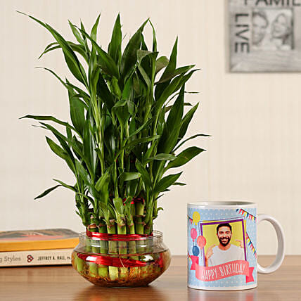 good luck plant with mug for him