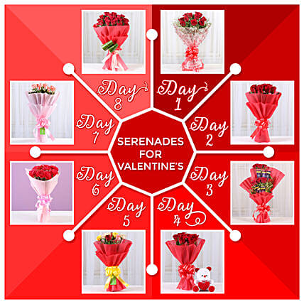 8 Days Valentine's Gift Series:Serenades